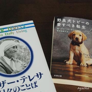 最近購入した本